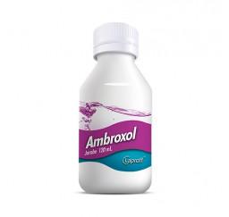 Ambroxol 30 mg / 5 ml * 120...